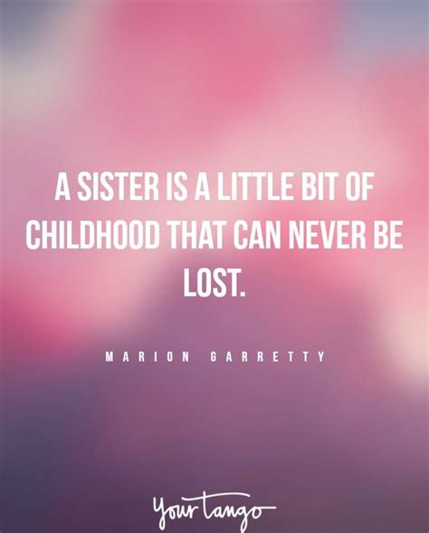 sister quotes  perfectly sum   crazy relationship fairies sister quotes