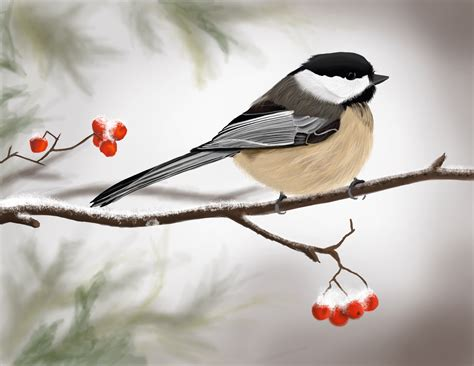 winter bird old windows pinterest chickadees winter