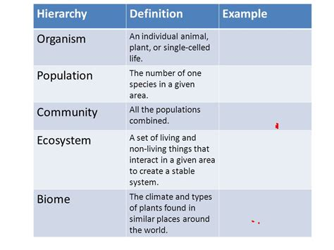 define biography and give exles hierarchical organization from smallest to largest