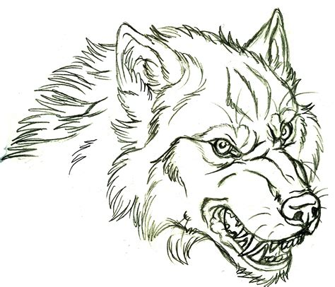 angry wolf coloring page brave wolf coloring page wolf coloring pages angry wolf