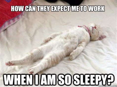 Sleepy Memes - how can they expect me to work when i am so sleepy
