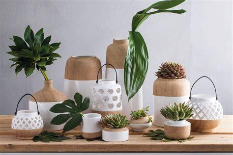 vasi piante design vasi piante design