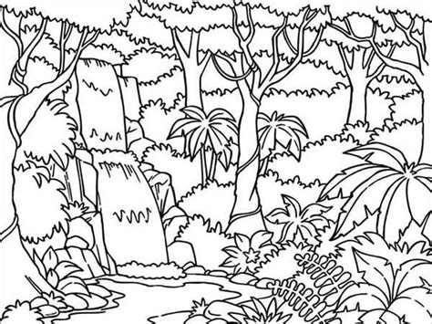 jungle tree coloring page 9 jungle coloring pages jpg ai illustrator download