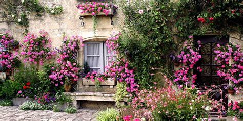 blauwe regen weinig bloemen maak je tuin in een handomdraai sfeervol met een
