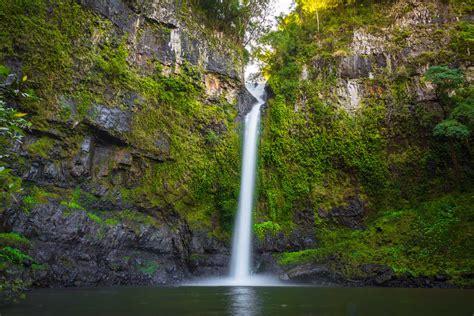 port douglas tour port douglas rainforest tours standbycairns