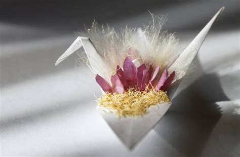 Beautiful Origami - beautiful origami crane by cristian snaps