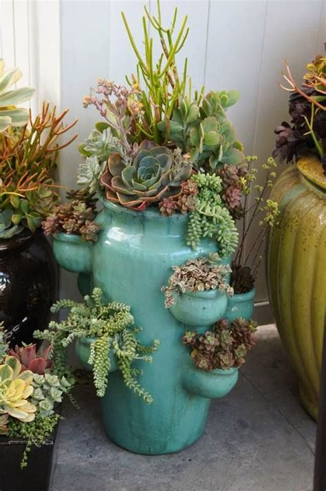 succulent planters best 10 succulent planters ideas on pinterest succulent