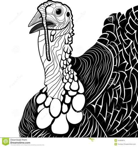 turkey bird head as thanksgiving symbol stock vector