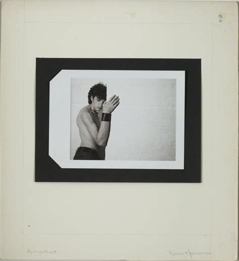 robert mapplethorpe polaroids tang gets gift of 500 photos mapplethorpe avedon arbus more arts talk