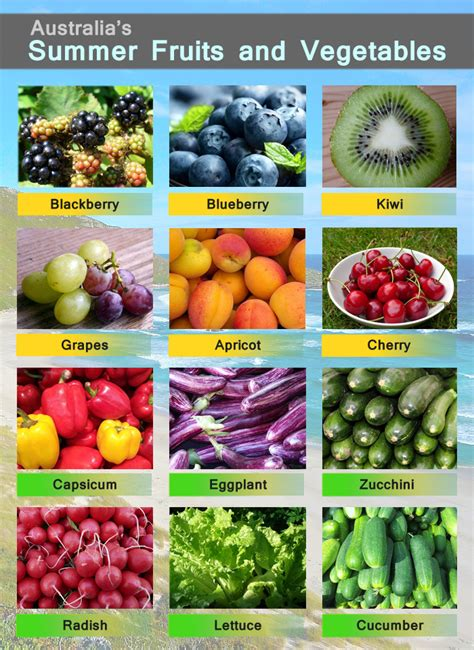 h and w vegetables summer fruits and vegetables thebesthealthylifestyletips