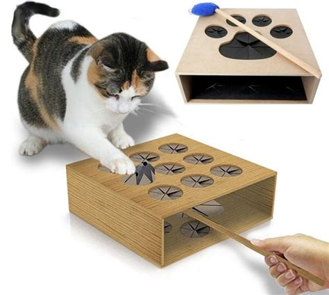 best cat toy ever cat whack a mole kitty pinterest