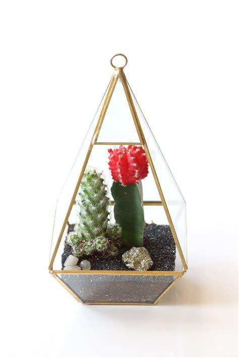 geometric terrarium pyramid  arcadia ca mds florist