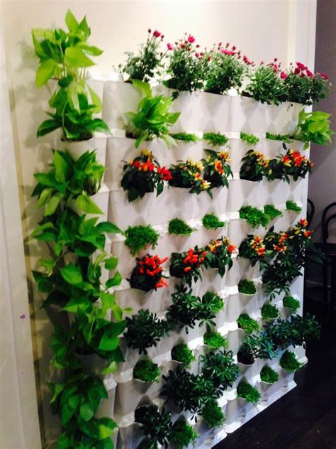 Mini Garden Vertical Vertical Gardening Brings Your Walls To Minigarden Us