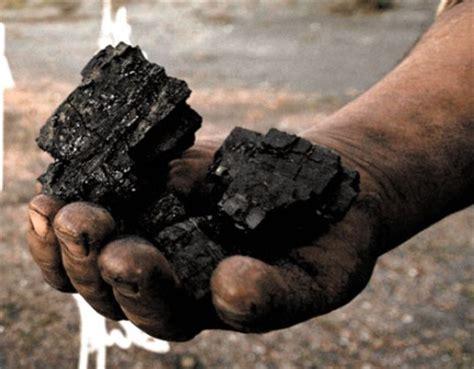 el millonario y oscuro negocio del carb n auge y miseria el carb 243 n ser 225 la primera fuente de energ 237 a en 10 a 241 os