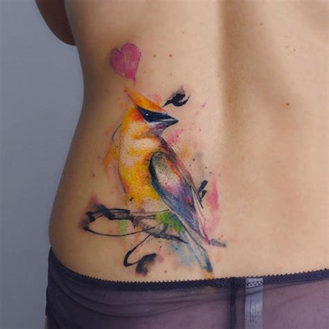 watercolor tattoos va 17 best ideas about cardinal bird tattoos on
