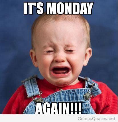 It S Monday Meme - funny its monday again baby photo