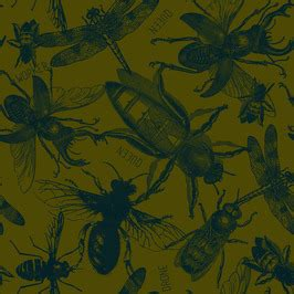 seasonal print trend collection of insects & beetles