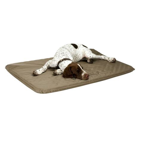 dog outdoor bed k h pet products lectro soft large outdoor heated dog bed