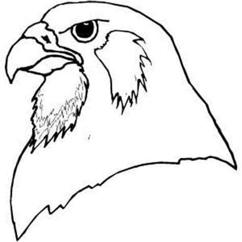coloring page falcon bird falcon head coloring page