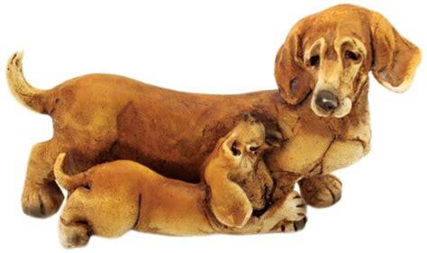 mini dachshund puppies for sale in michigan miniature dachshund puppies for sale in michigan