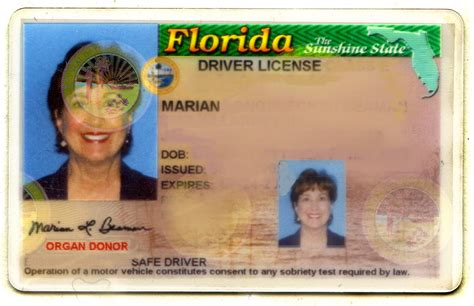 florida drivers license template florida driver s license plain and fancy