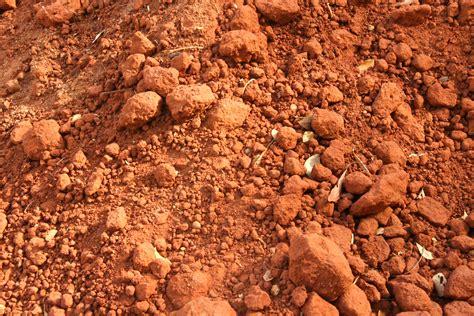 soil wikipedia file soil auroville jpg wikimedia commons
