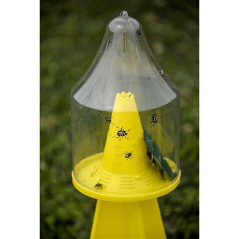 bed bugs traps ambush stink bug trap gardens alive