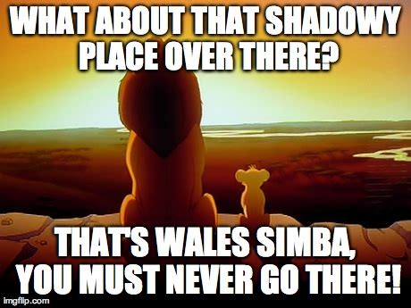 Lion King Memes - lion king shadowy place meme lion king meme shadowy place