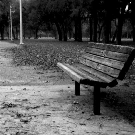 lonely bench the lonely bench favorite places spaces pinterest