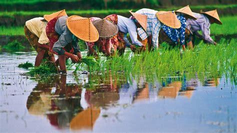 viet nam or vietnam playlist 32 vietnam yap magazine