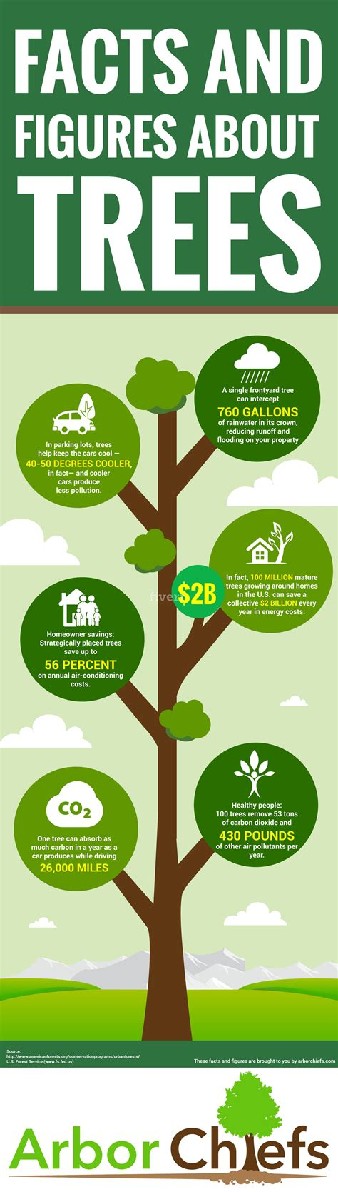 amazing facts and figures about trees infographic