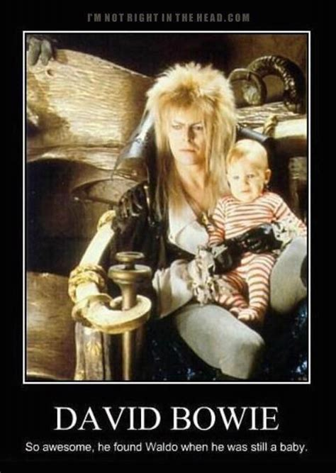 David Bowie Labyrinth Meme - david bowie is so awesome funny