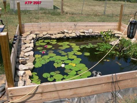 backyard turtle habitat 40 best images about semi aquatic habitats on