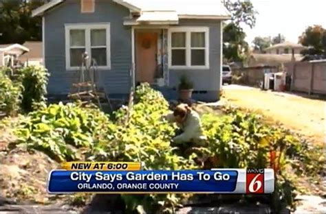 Backyard Gardens Illegal by Fight For The Right To Grow Food Orlando Cited For