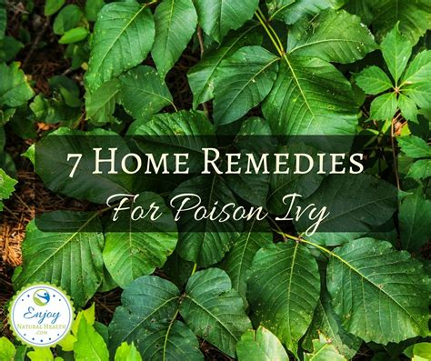 seven home remedies for poison enjoy health