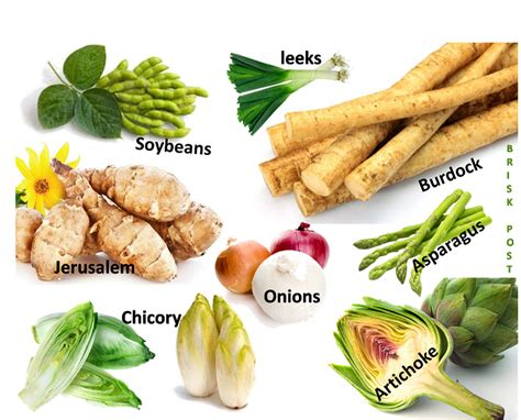 carbohydrates in vegetables 3 forms of carbohydrate rich food the sources of
