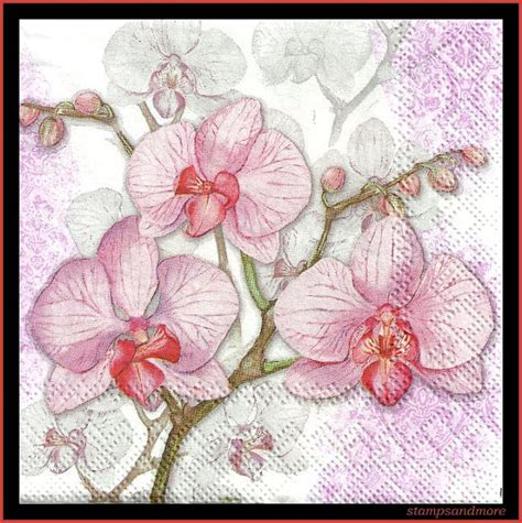 Tempat Tissue Decoupage Pink pink orchids on paper decoupage napkins use for crafts