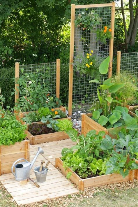 see how you can grow amazing vegetables in raised garden