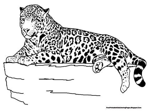 printable jaguar pictures jaguar laying coloring pages free printable