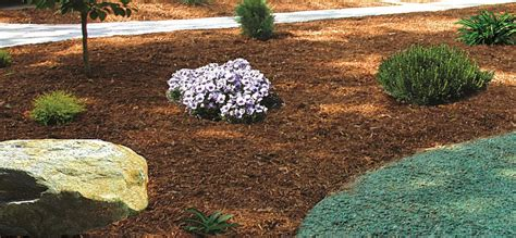 ct landscaping excavation contractors ct landscape