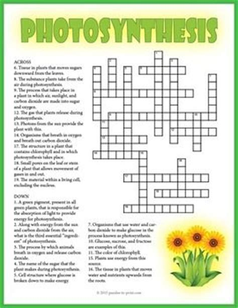 carbohydrates unit review crossword puzzle 105 best images about crosswords for on