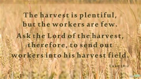the harvest is plentiful but the workers are few 17 best images about homeschool on pinterest
