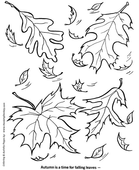 autumn theme colouring pages