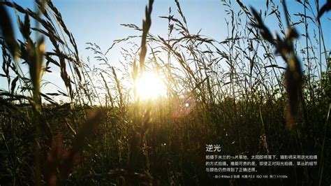 New Xiaomi Mi 5a Auto Focus Transparan Auto Focus Slim xiaomi mi max 2 sles available
