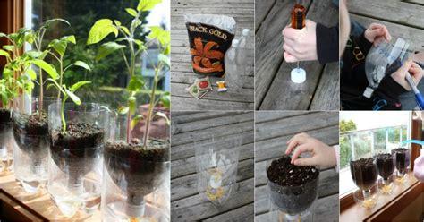 recycle plastic bottles   watering seed starter