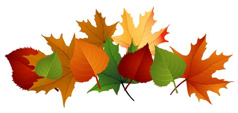 clipart autumn leaves fall leaves colorful clip for the fall season autumn