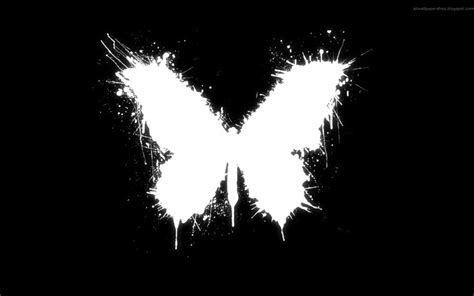 white and black wallpaper butterfly white black background hd wallpaper of black