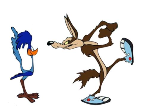 wile e coyote facts roadrunner and coyote
