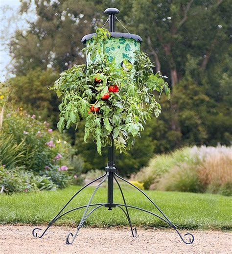 Wine Bottle Home Decor super size topsy turvy upside down tomato tree the green