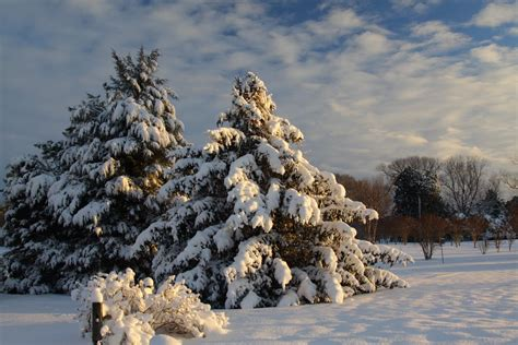 farmers almanac florida time to polish your snow shovel farmers almanac north carolina winter predictions 2018